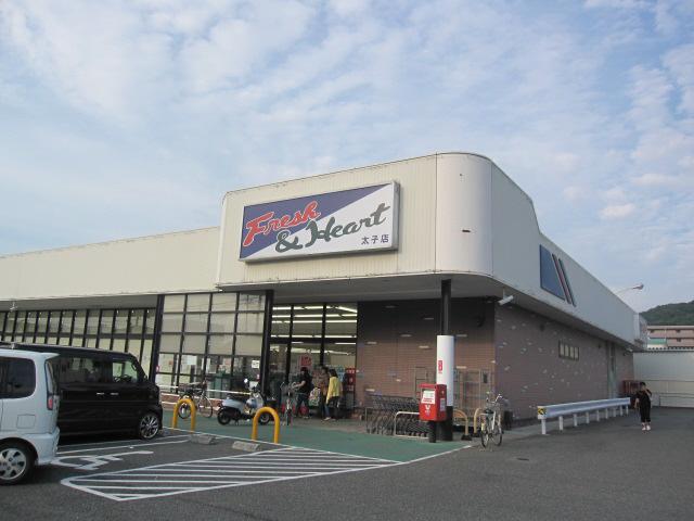 物件番号: 1115156516  姫路市西八代町 1R マンション 画像24